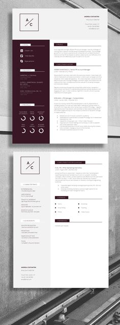 Professional CV / Resume - Strong Layout, suitable for... Accountant, Account Director, IT Director #Job #Resume