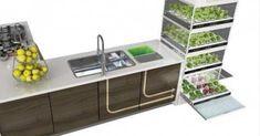 Un pequeño sistema muy conveniente para aquellos que viven en apartamentos o no tienen un patio o jardín, que sirve para tener vegetales frescos, incluso en los meses más fríos del invierno.