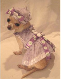 Lovely in Lilac Harness Dress Set 3 Piece Set includes Dress, Hat and Leash-Sold Out