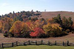 Autumn Peaks at Doughton Park , NC USA
