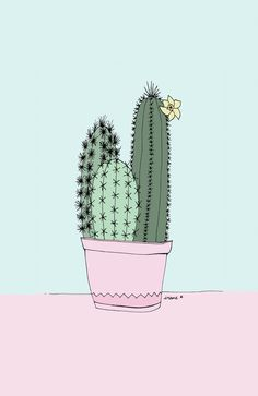Cactus illustrations by Irene Cabrera Lorenzo. There's something beautifully feminine about the style.