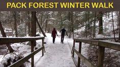 A WINTER WALK through PACK DEMONSTRATION FOREST - ADIRONDACK PARK