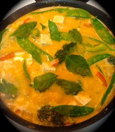 Seriously guys...this stuff is the best! Thai Vegan Panang Curry with Tofu and Veggies
