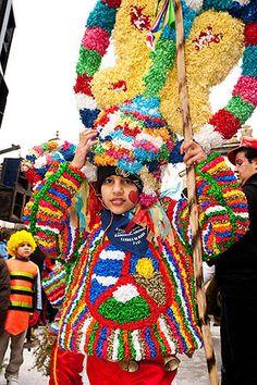 El carnaval de Viana do Bolo es conocido por los boteiros, trajes de costosísima realización y bello colorido; y los foliones, grupos de 30 a 40 vecinos con grandes bombos, azadas, guadañas, cornas, que visitan la distintas parroquias