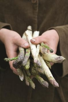 Chilled asparagus soup recipe [Skip the cream. Use homemade broth.]