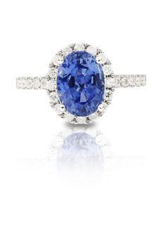 Cornflower blue Ceylon Sapphire with a halo of diamonds Coloured Stone Rings, Ceylon Sapphire, Gemstone Colors, Halo, Diamonds, Wedding Rings, Jewels, Engagement Rings, Gemstones