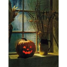 365 Days of Halloween ❤ liked on Polyvore featuring home, home decor, holiday decorations and halloween home decor