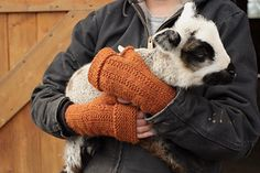 Lambing season has arrived and so have the Tolt Lambing Mitts. These hardy fingerless mitts will keep you warm during the cold morning and evening barn chores and even in the wee hours when you are called to the birth of new lambs.