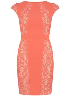 coral lace bonded dress // dorothy perkins // $59