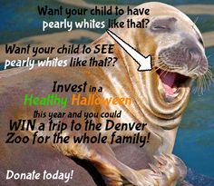Donate $10 or more to Healthy Learning Paths today and you could WIN a Family Four (4) Pack to the @DenverZoo!