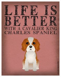 Life is better with a Cavalier King Charles Spaniel