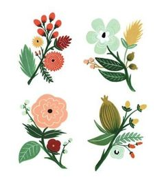 rifle paper co floral - Google Search