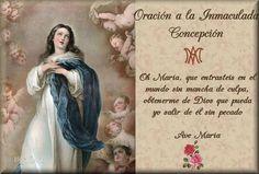 Santa María, Madre de Dios y Madre nuestra: Oración a la Inmaculada Concepción