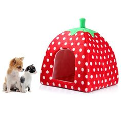 Soft Sponge Strawberry Pet Cat Dog House Bed Warm Cushion Basket * Learn more by visiting the image link. (This is an affiliate link and I receive a commission for the sales)