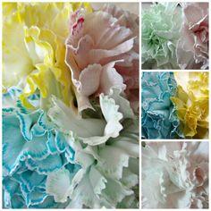 Free nomenclature cards Montessori Partes de la flor