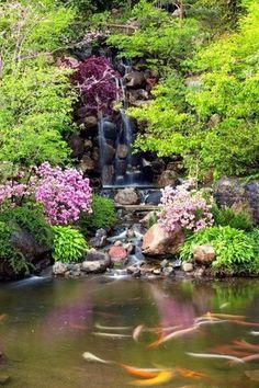 Anderson Japanese Gardens resmi