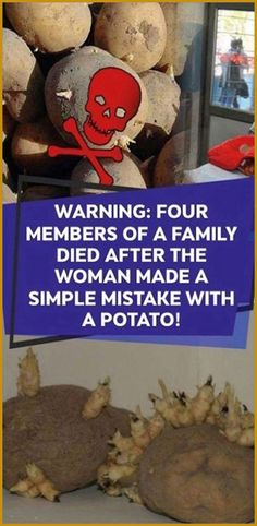 Warning: Four Members Of A Family Died After The Woman Made A Simple Mistake With A Potato! - Only Herbal Medicine Natural Health Tips, Natural Health Remedies, Natural Skin, Natural Cures, Natural Life, Holistic Remedies, Natural Healing, Holistic Healing, Herbal Remedies