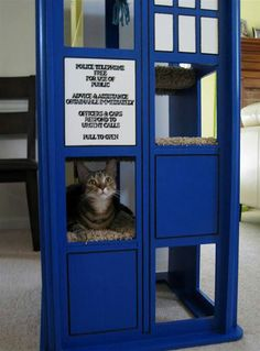 Dr Who tardis cat house