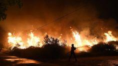 """O especialista em fogos florestais Paulo Fernandes considera que o sistema de combate """"não está capacitado"""" para responder """"com eficácia a grandes incêndios"""", mas sim para """"defender pessoas e casas""""."""