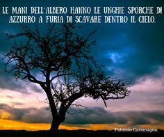 Quote by Fabrizio Caramagna #quotes #quote #aforismi #nature #natura #flowers #citazioni #naturequotes #Fabrizio #Caramagna #FabrizioCaramagna