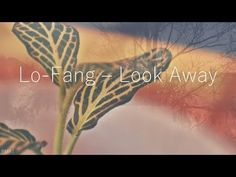 Lo-Fang - Look Away