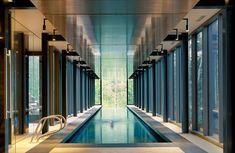 Vivere tra i boschi Un lato dello chalet ospita una piscina da 25 m con pareti in vetro. Un volume in cemento, vetro e acciaio moderno e luminosissimo Foto Nic Lehoux