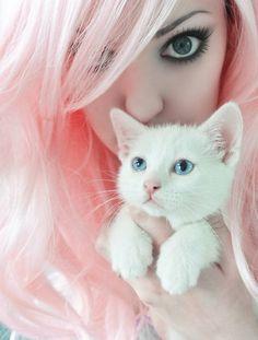 Adorable kitten & pretty pink pastel hair and pretty makeup. Pastell Pink Hair, Pastel Goth, Pastel Pink, Josie Loves, Girly, Emo Girls, Hair Girls, Girls Eyes, White Cats