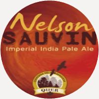 Nelson Sauvin by Quer Beer