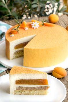 Just a Vanilla Cake Recipe Fancy Desserts, Just Desserts, Dessert Recipes, Entremet Recipe, Bolo Original, Mango Cake, Cake Recipes From Scratch, Homemade Cake Recipes, Mousse Cake