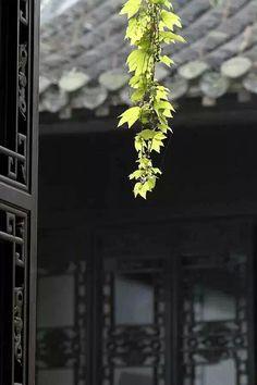 庭院深深深几许-画家王肖峰, China mood