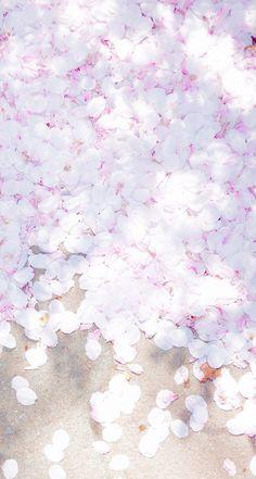 Картинка с тегом «pink, flowers, and wallpaper»