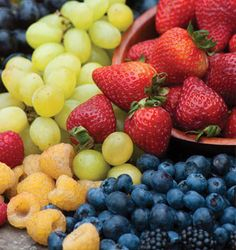 Fruit Seeds and Plants: Strawberry, Blueberry, Raspberry, Watermelon - Burpee Seeds