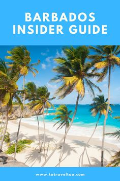 Visit Barbados, Barbados Travel, Us Travel, Travel Guide, Us Islands, Next Us, Island Tour, Travel Articles, Worlds Of Fun