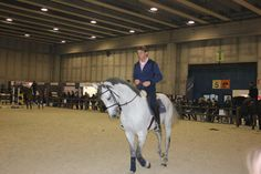 #fieracavalli #whyilovehorses #cavalli #horse #horses #veronafiere #verona