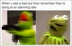 Kermit the frog is a popular character from American television show. We bring you 22 funniest kermit the frog meme below. Memes Humor, Memes Lol, Stupid Funny Memes, Funny Relatable Memes, Buzzfeed Funny Humor, Funny Fails, Kermit The Frog Meme, Funny Kermit Memes, Really Funny Memes