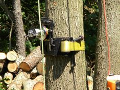 Our experienced arborists always place safety above everything and pay close attention to the surroundings of the tree that needs to be removed when deciding which method to employ.