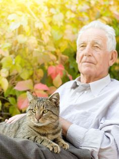 Elderly Care in Homewood AL: It's no secret that pets bring healing powers to people – keeping them healthier and allowing them to heal faster following an illness or surgery.