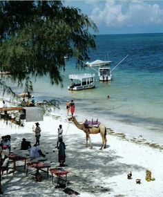 Bleached white sands on the Indian ocean, Mombasa Kenya ...... Also, Go to RMR 4 awesome news!! ...  RMR4 INTERNATIONAL.INFO  ... Register for our Product Line Showcase Webinar  at:  www.rmr4international.info/500_tasty_diabetic_recipes.htm    ... Don't miss it!