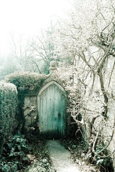 "Frosty morning...  looks like ""Secret Garden"""