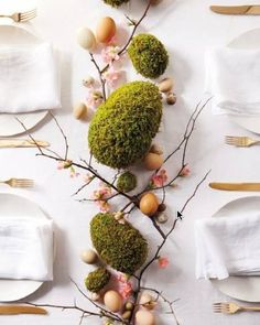 moss eggs home decor