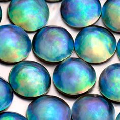 blue eyris pearls formed by the New Zealand paua (Haliotis iris), a rainbow coloured abalone.