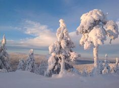 What a view in Levi, Finland, Lapland