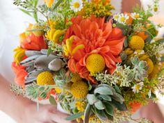 orange dahlias and billy balls, and seeded eucalyptus
