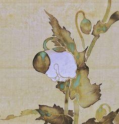Detail. 尾形光琳 Ogata Korin. Edo period. Poppies. Japanese Hanging scroll. Eighteenth century. Rimpa School. British Museum.