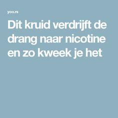 Dit kruid verdrijft de drang naar nicotine en zo kweek je het