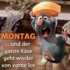 Montag                                                                                                                                                     Mehr