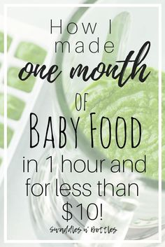 How to Make One Month of Baby Food in One Hour and for Less Than $10. Great way to save money on your little eater! Healthy, inexpensive way to feed your kiddo!