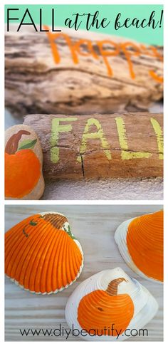 When you find yourself living at the beach during the fall, find a way to create…