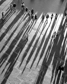 Reminds me of the classic shot of the camels in the desert, where their shadows appear to be their bodies.