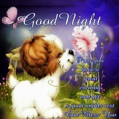 96 Best Goodnight & Sweet Dreams images in 2019 | Good night